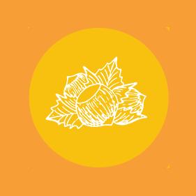 hasselpähkinä icon