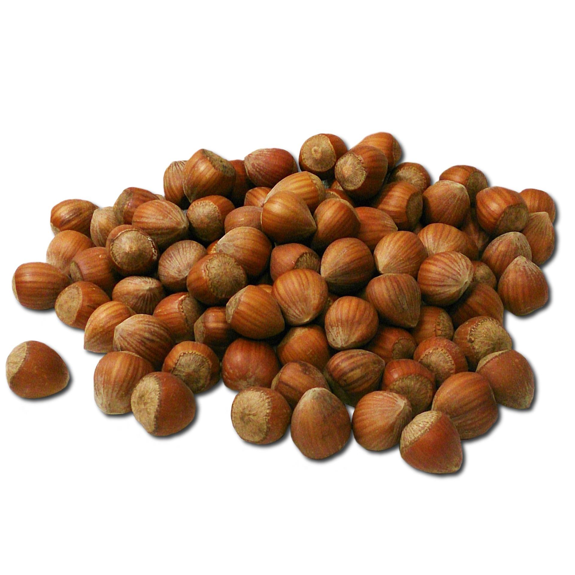 Hasselpähkinä ja ravintoarvot